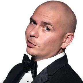 Pitbull & Friends Club Mix