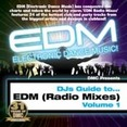 DJs Guide To... EDM 1 (Radio Mixes)