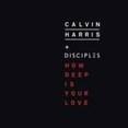 How Deep Is Your Love (Radio)